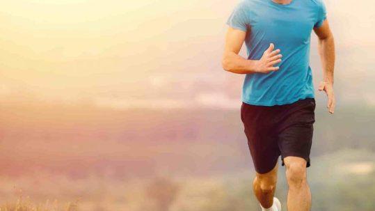 cbd training & inflammation
