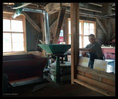 Mill Maintenance, Fred Schulz about to add more grain to the Buhr Mill