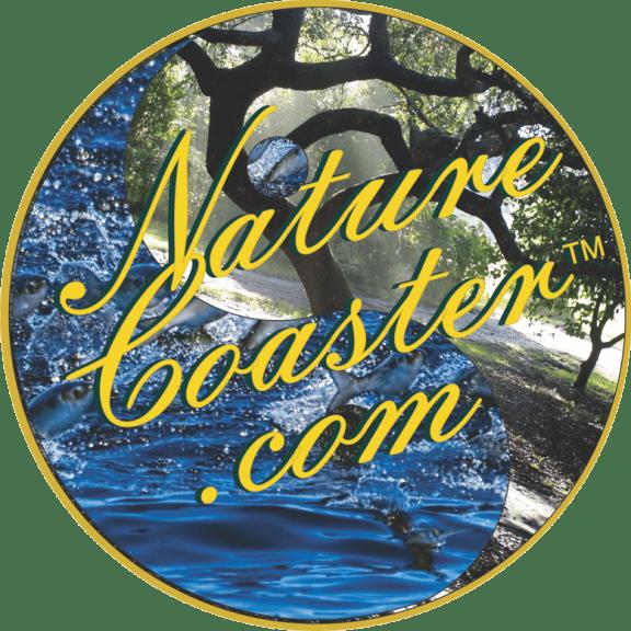 New Nature Coaster Logo