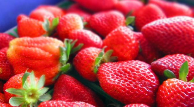 30th Annual Strawberry Festival – Floral City Style