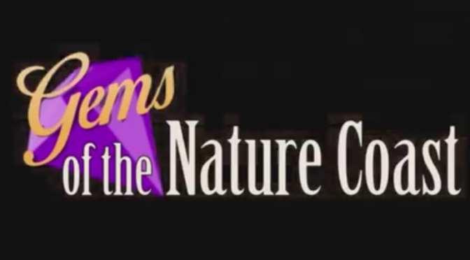 NatureCoaster Partners with WYKE TV: Gems of the Nature Coast
