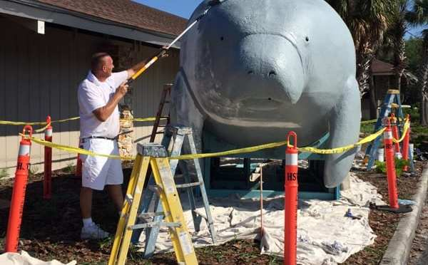 Bubbles the Manatee gets Refurbished and Fresh Paint