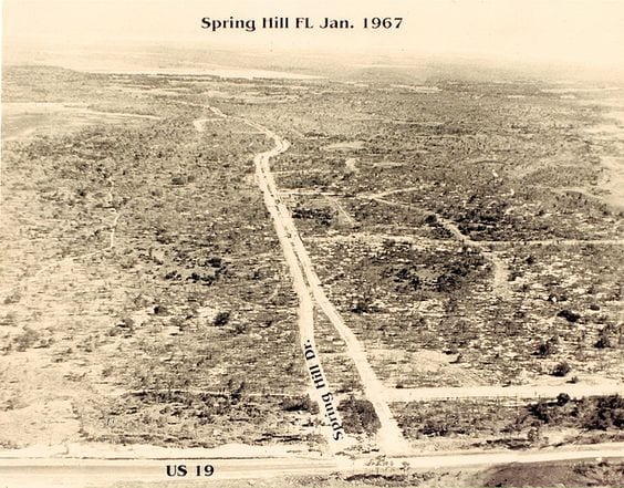 Spring Hill before the planned community was built.