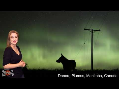 Two Coronal Holes Keep Us in Suspense: Solar Storm Forecast 10-17-2019