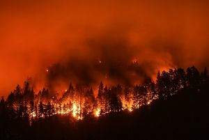 California Let S Stop Making Wildfire History