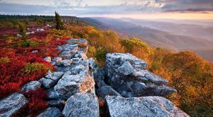 Canaan Valley and Dolly Sods | The Nature Conservancy