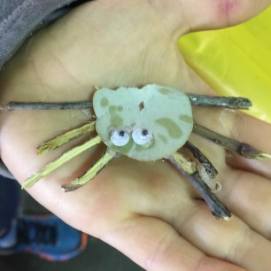 kids-nature-craft-spider