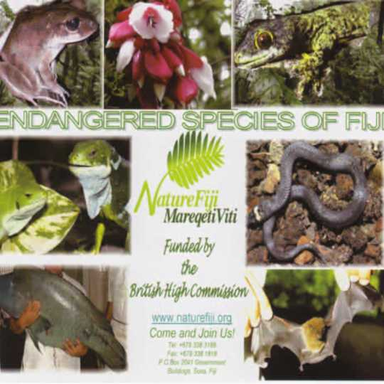 CD Rom: Endangered Species of Fiji