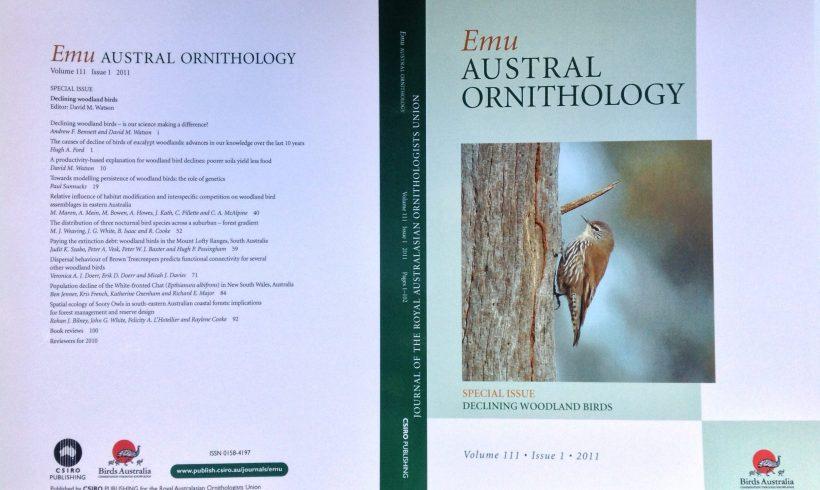 The conservation value of secondary vegetation for Fijian woodland birds