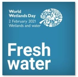 WORLD WETLANDS DAY 2021: WETLANDS AND WATER