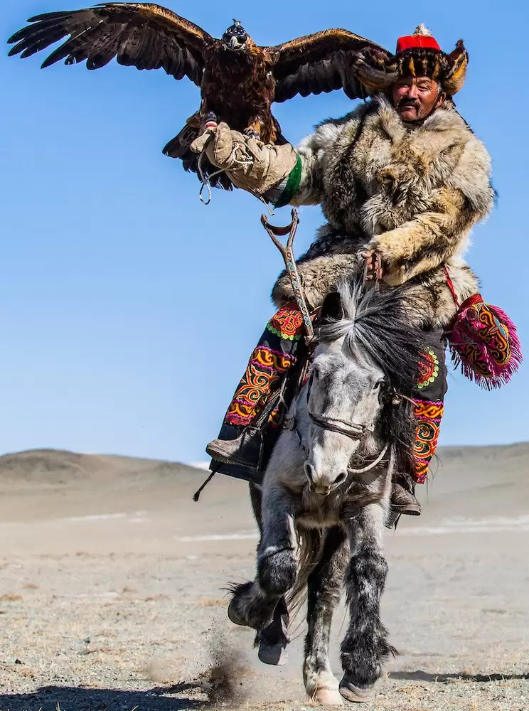 Kazakh eagle hunter riding on horseback with their golden eagles