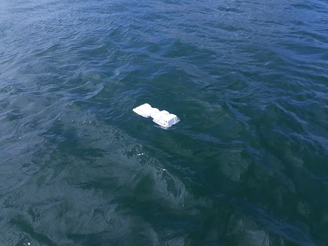 styrofoam floating in sea