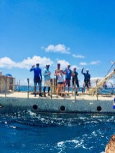 people standing on partially submerged wreck
