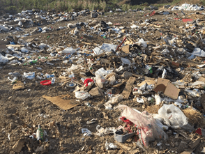 Litter at the Over the Bank Area in Philipburg- Chantal Mondelice photo