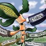 Gli svantaggi della moderna produzione di biodiesel