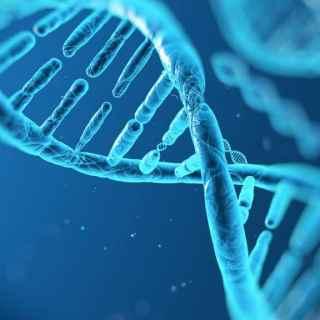 Vitamin D, Genes and Crohn's Disease - Nature Going Smart