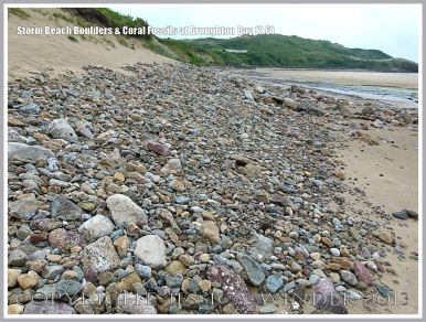 View looking west at Broughton Bay showing line of storm beach boulders and pebbles