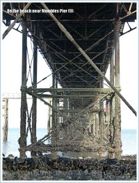 View of the supporting girders and struts that provide a habitat for marine and seashore creatures beneath Mumbles Pier