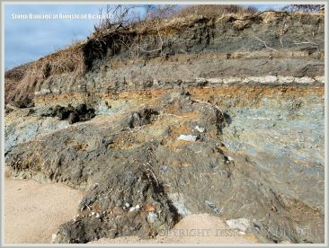 Rock fall in low cliff of Jurassic Corallian & Kimmeridge Formation strata at Ringstead Bay