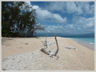 Beachscape at Normanby Island