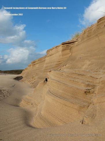 Erosion of sand dunes showing stratification of sand