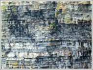 Upper Carboniferous sandstone, siltstone, and mudstone rock strata at the Cliffs of Moher.