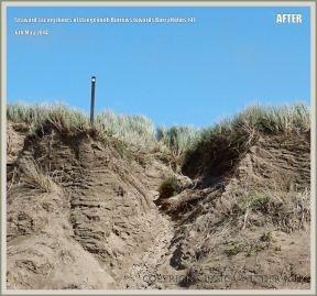 Eroded sand dunes at Rhossili in May 2014
