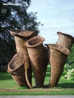Larger than life willow sculptures of fungi by Tom Hare