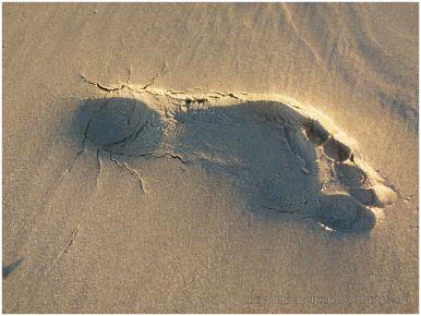 Footprint in the sand at Rhossili Beach