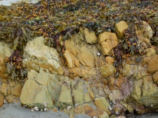 Silurian rocks at Smerwick Harbour