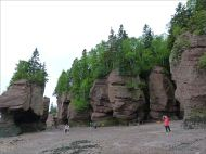 """View from beach level of red cliffs and """"flower pots"""" at Hopewell Rocks in New Brunswick."""