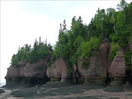Red cliffs with vertical fissures and horizontal undercutting at Hopewell Rocks in New Brunswick.