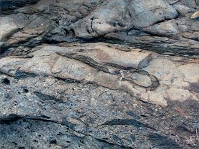Colour and texture, possibly showing evidence of extrusive volcanic activity, in a rock outcrop near Four Mile Beach in Port Douglas
