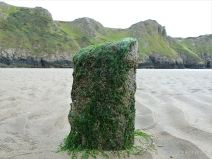 Stump of a wooden post belonging to an unidentified structure on Rhossili beach