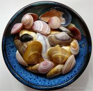 Colourful seashells in a blue bowl