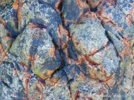 Black and orange bio-films on massive vein quartz at Marble Bay