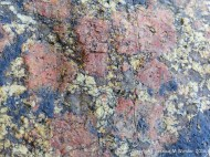 Close-up of L'Eree Granite with pink megacrysts of feldspar