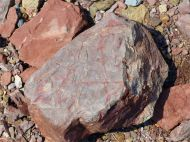 Triassic-Jurassic Blomidon Formation rocks at Wasson Bluff