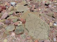 Jurassic North Mountain Basalt boulder at Wasson Bluff