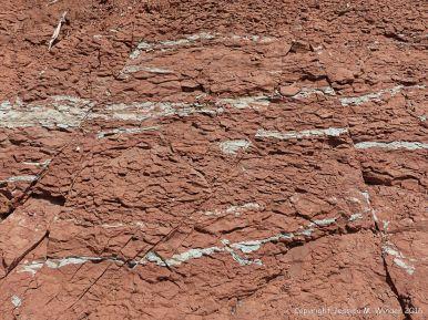 Jurassic McCoy Brook Formation rocks east of Wasson Bluff