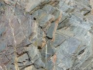Close-up of cleavage planes lin phyllite rock, which is metamorphosed shale at Presqu'ile