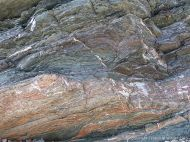 Close-up of cross-section through finely layered phyllite rock at Presqu'ile