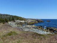 Coastal view looking north near Morning Star Cove