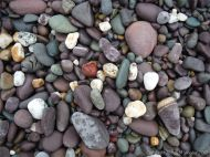 Beach pebbles from the Trabeg Conglomerate Formation at Trabeg on the Dingle Peninsula in Ireland