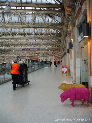 Two colourful sheep looking lost at a train station