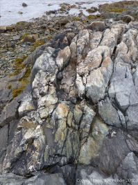Outcrop of volcanic rock at Fourchu Head