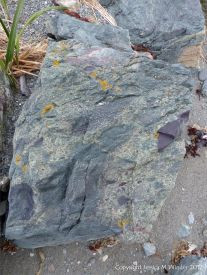 Boulder of volcanic rock at Fourchu Head