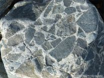 Close-up of rock pattern and texture in a beach boulder at Rousse Point