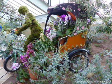 Rickshaw in the Princess of Wales Conservatory at Kew gardens