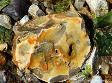 Broken flint beach stone
